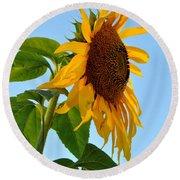 Profile Of A Sunflower Round Beach Towel by Kathleen Sartoris