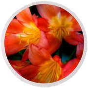 Profusion Of Red Round Beach Towel