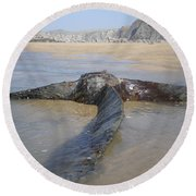 Propeller Steamship Belem Shipwreck Round Beach Towel by Richard Brookes