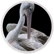 Prospecting - Pelican Round Beach Towel