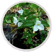 Round Beach Towel featuring the photograph Protected Wild Trillium  by LeeAnn McLaneGoetz McLaneGoetzStudioLLCcom