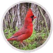 Proud Cardinal Round Beach Towel