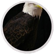 Round Beach Towel featuring the photograph Proud by Douglas Stucky