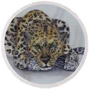 Round Beach Towel featuring the painting Prowling Leopard by Kelly Mills