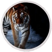 Prowling Out Of The Shadows Round Beach Towel