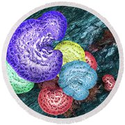 Psychedelic Mushrooms Round Beach Towel