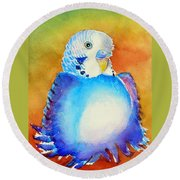 Pudgy Budgie Round Beach Towel