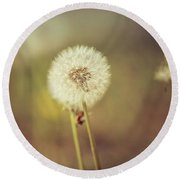 Round Beach Towel featuring the photograph Puffer by Lora Lee Chapman