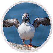 Puffin With Fish For Tea Round Beach Towel