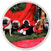 Pugs And Dachshounds Dressed As Father Christmas Round Beach Towel