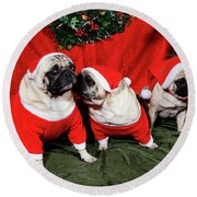 Pugs Dressed As Father-christmas Round Beach Towel