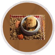 Pumpkin With Pumpkin Round Beach Towel