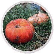 Pumpkins In A Row Round Beach Towel by Enzie Shahmiri