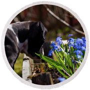Puppy And Flowers Round Beach Towel