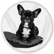 Puppy - Monochrome 5 Round Beach Towel