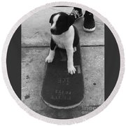 Puppy Skater Round Beach Towel