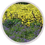 Round Beach Towel featuring the photograph Purple And Yellow Flower Compound by Jasna Gopic