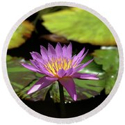 Purple And Yellow Water Lily Round Beach Towel