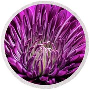 Purple Beauty Round Beach Towel