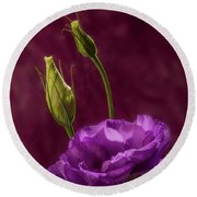 Purple Blossom And Buds Round Beach Towel by Garry McMichael