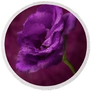 Purple Blossom With Morning Dew Round Beach Towel by Garry McMichael