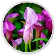 Purple Calla Lilies Round Beach Towel