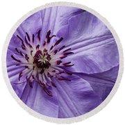 Purple Clematis Blossom Round Beach Towel