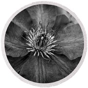 Purple Clematis In Black And White Round Beach Towel by Chrystal Mimbs
