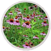 Purple Coneflower  Round Beach Towel by Eva Kaufman