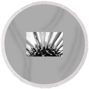 Purple Coneflower In Black And White Round Beach Towel