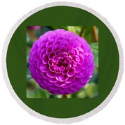 Purple Dahlia Round Beach Towel
