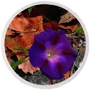 Purple Flower Autumn Leaves Round Beach Towel