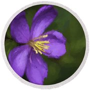 Round Beach Towel featuring the photograph Purple Flower Macro Impression by Dan McManus