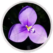 Round Beach Towel featuring the photograph Purple Flower On The Stage by Jasna Gopic