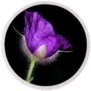 Purple Flowering Raspberry Round Beach Towel by Barbara Bowen