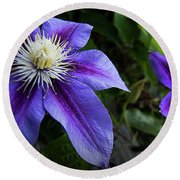Round Beach Towel featuring the photograph Purple Flowers by Brian Jones