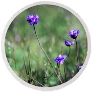 Round Beach Towel featuring the photograph Purple Flowers by Jim and Emily Bush