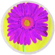 Purple  Gerbera On Yellow, Watercolor Round Beach Towel