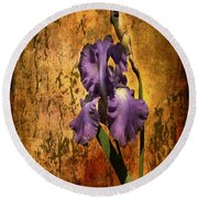 Purple Iris At Sunset Round Beach Towel