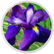 Round Beach Towel featuring the photograph Purple Iris Beauty by Sue Melvin