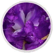 Round Beach Towel featuring the photograph Purple Iris Close Up by Jean Noren