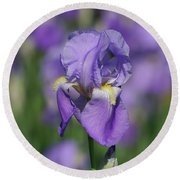 Purple Iris Fields Forever Round Beach Towel