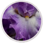 Round Beach Towel featuring the photograph Purple Iris by Jean Noren