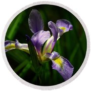Purple Iris Round Beach Towel by Lisa L Silva