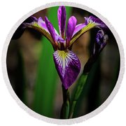 Round Beach Towel featuring the photograph Purple Iris by Tikvah's Hope