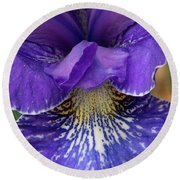 Round Beach Towel featuring the photograph Purple Japanese Iris Closeup by Jean Noren