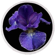 Round Beach Towel featuring the photograph Purple Japanese Iris by Jean Noren