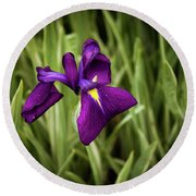 Round Beach Towel featuring the photograph Purple Japanese Iris by Joann Copeland-Paul