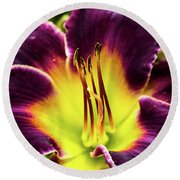 Purple Lily - Close Up Round Beach Towel by Penny Lisowski