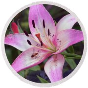 Round Beach Towel featuring the photograph Purple Lily by Elvira Ladocki